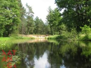 река узлянка 1