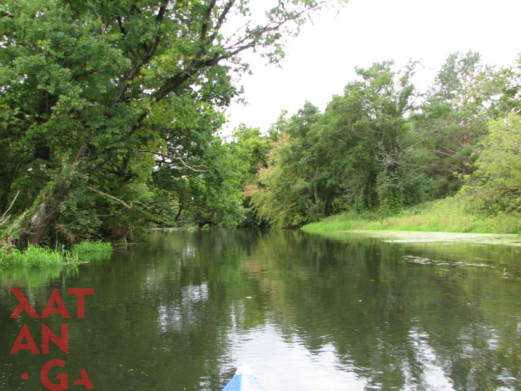 Река Бобр 1