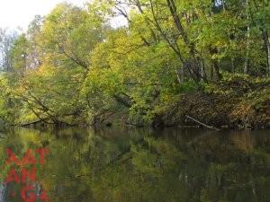 Река Ислочь 14