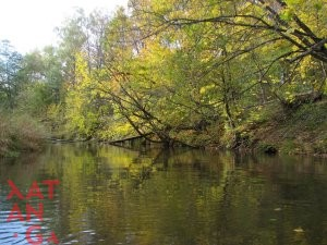 Река Ислочь 16